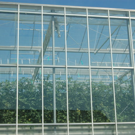 greenhouses agico